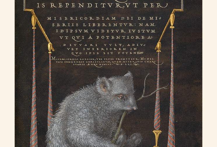 Kalligrafi: Sloth