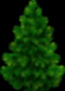 grantræ.png
