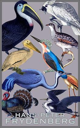 Kortspil Fugle 2 sæt