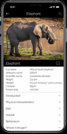 Website 2 - Mammal Profile_0.75x.png