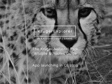 Plan | Discover | Share
