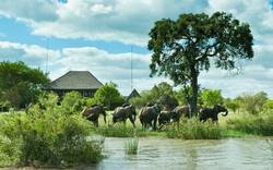 1. Nzumba Lodge