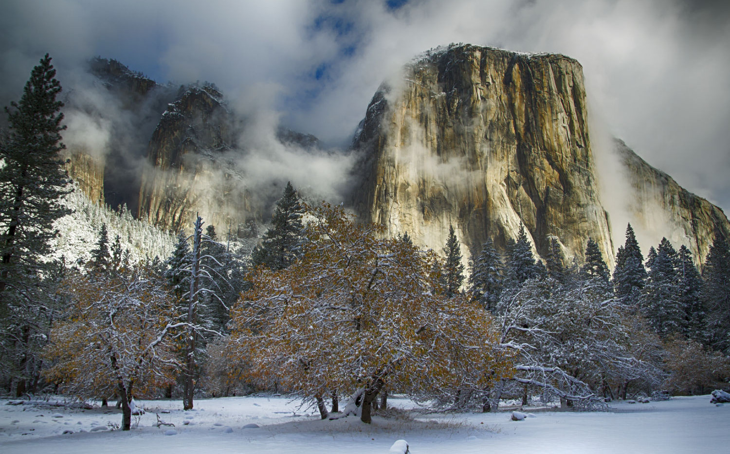 Early Storm in Yosemite