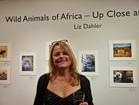 New Exhibit  11/5-12/7/19 - Wild Animals of Africa - Up Close and Personal
