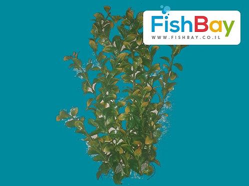 דקורציה לאקווריום צמח 30 סנטימטר