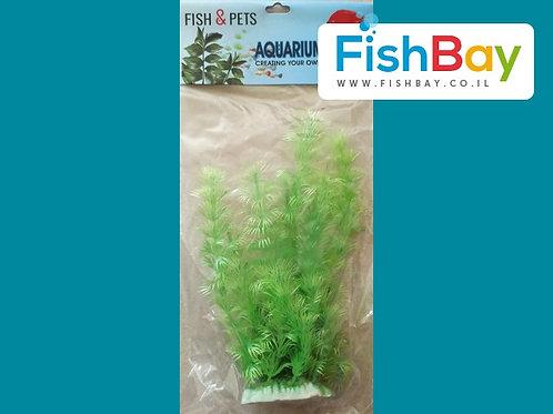 צמח ירוק לאקווריום