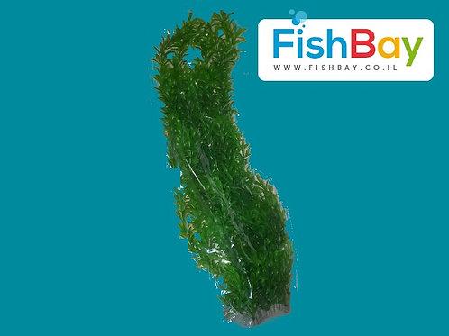 צמח לאקווריום גובה 42.5 סנטימטר