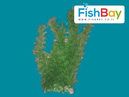 צמח דקורציה בגודל 20 סנטימטר