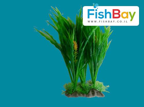 צמח לאקווריום גובה 26 סנטימטר