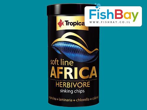 תחליף מזון קפוא לדגי נוי מזון לדגי נוי