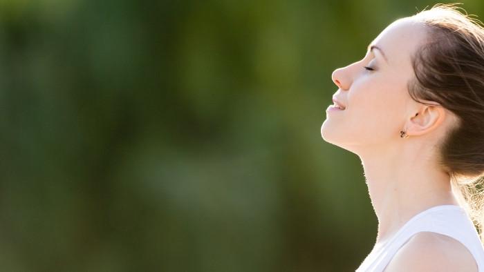 Workshop Meditatie en thee