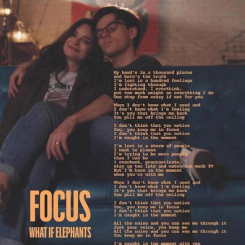 focus what if elephants2.jpg