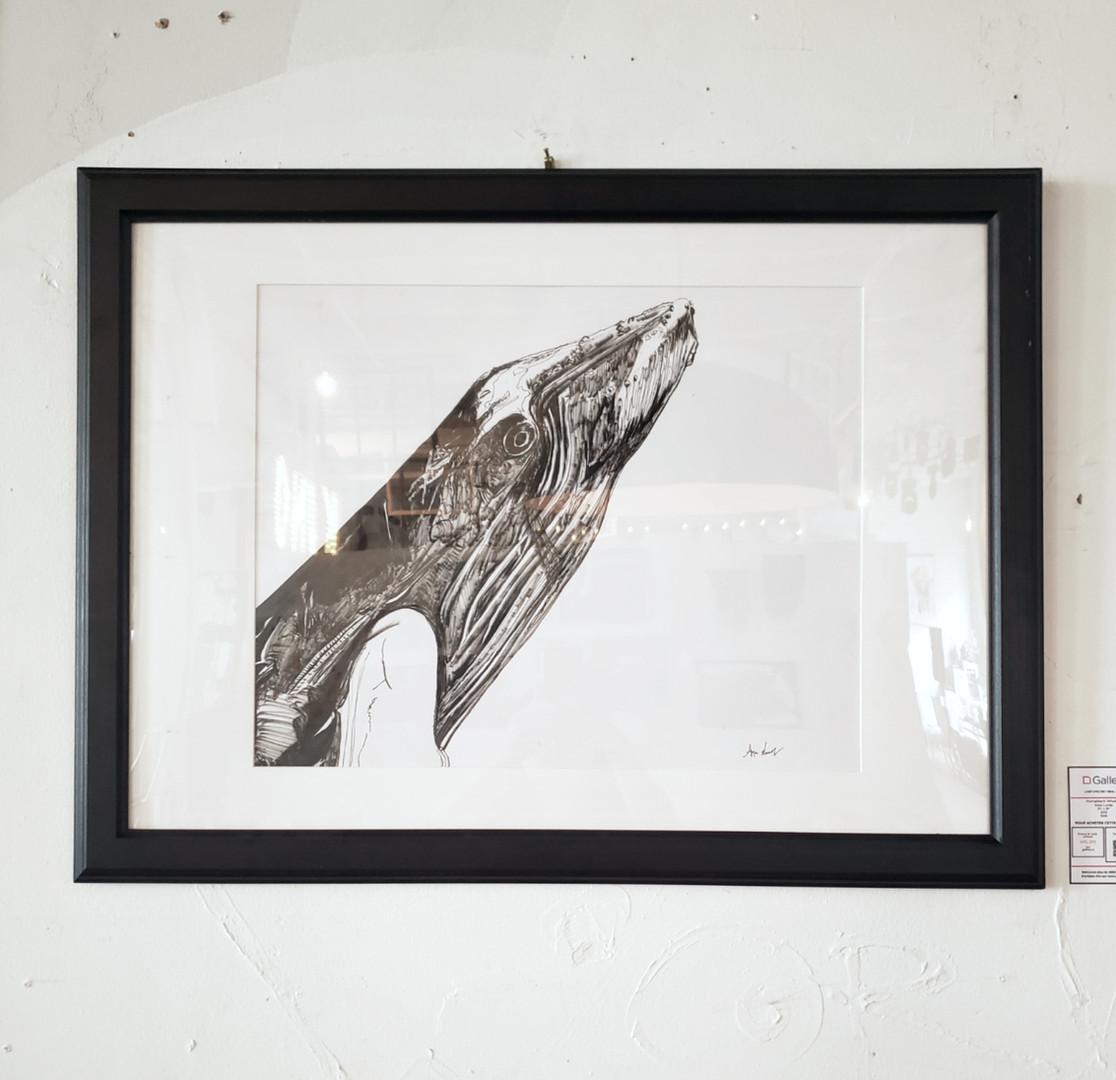 _Humpback Whale 2_ de Anya Lundy.jpg
