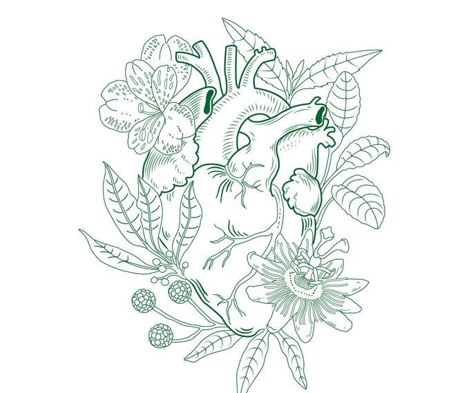 logo verde-04.jpg