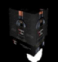 CDD_BV_CS-CA_Caja Master_montaje_(04.04.
