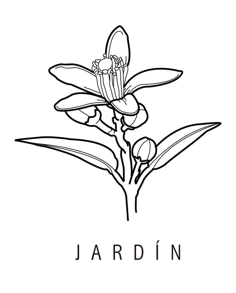 icono jardín-01.jpg
