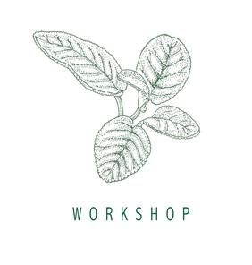 Salvia verde workshop.jpg