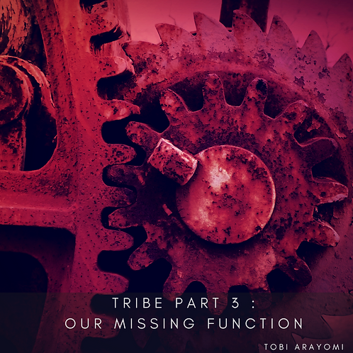 TRIBE 3 : OUR MISSING FUNCTION