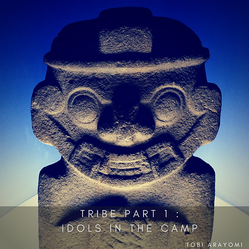 TRIBE 1 :IDOLS IN THE CAMP