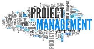 Project vs. Program Management- What is the difference?