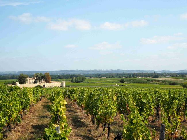 Kraj Bordeaux - očima vínomilce