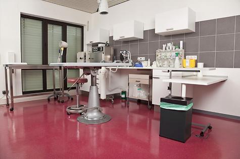 Coated Concrete Floor in Health Office