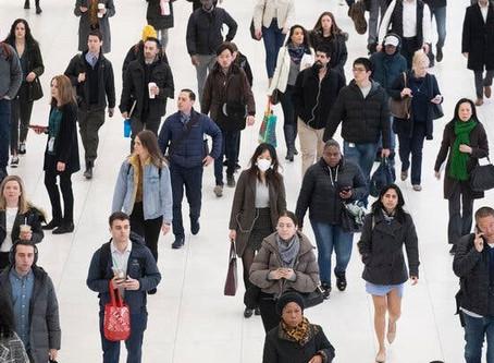 Libertarian Economists Running in Herds