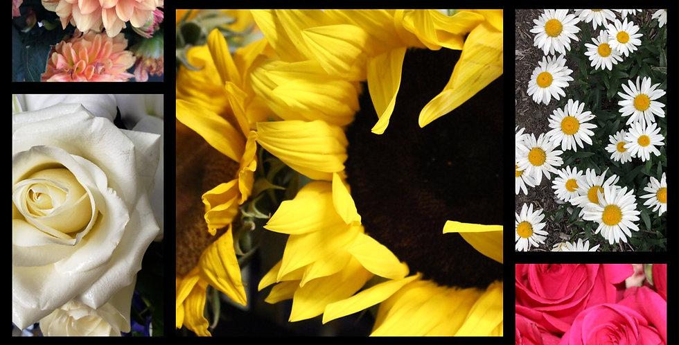 AEV Florist Choice