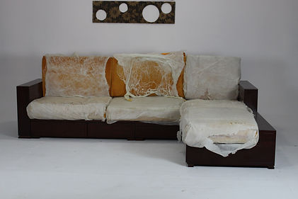 Recover sofa