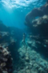Snorkeling sur St Leu