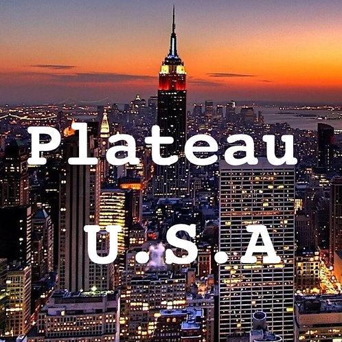 Plateau Repas USA