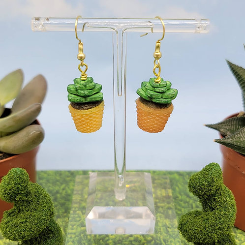 Green Succulent Earring Pair