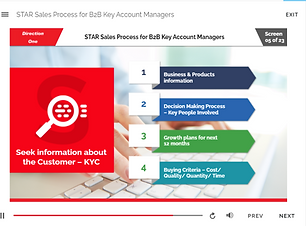 Star sales process elearning 3.png