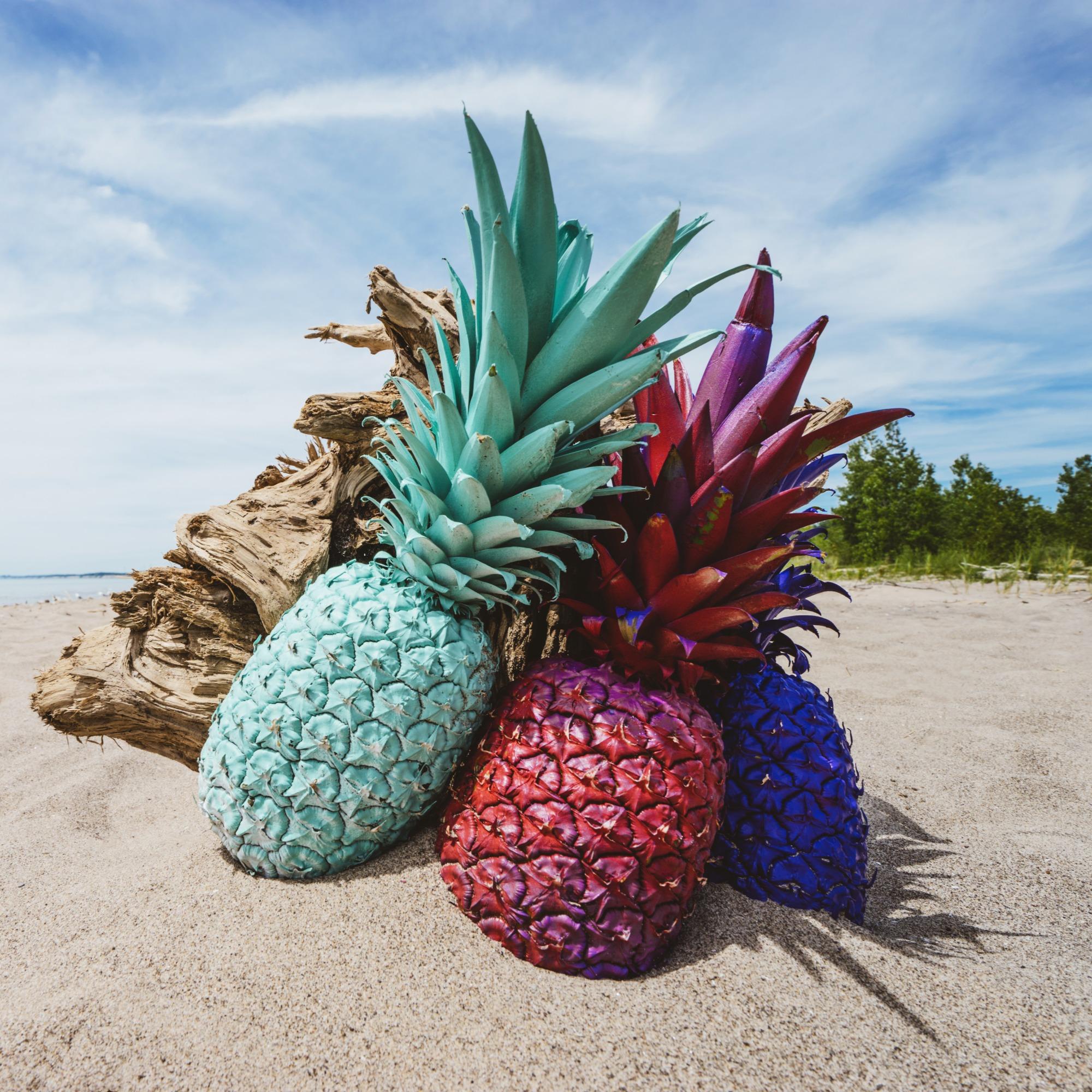 pineapple-supply-co-nd0auAKqUu0-unsplash