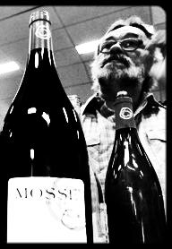 René Mosse