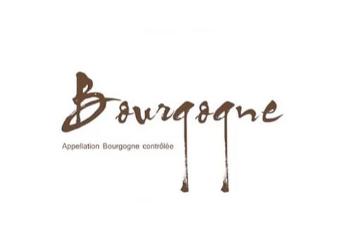 Sarnin-Berrux - Bourgogne blanc 2016