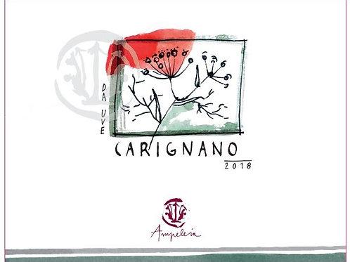 Ampeleia - Carignano 2018