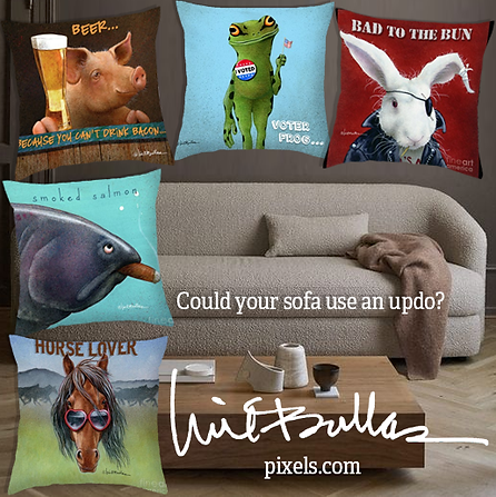 couchtrowpillow.png