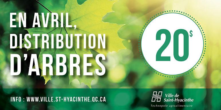 ville de saint-hyacinthe affiche distribution d'arbres