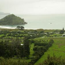 Great Barrier Island shoreline