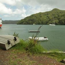 Port Fitzroy, Great Barrier Island