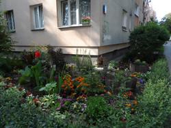 II m ogródek