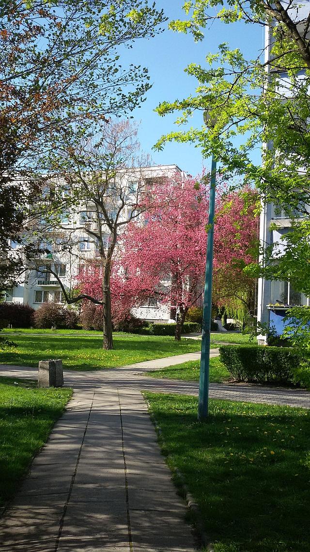 wiosna na Rakowcu