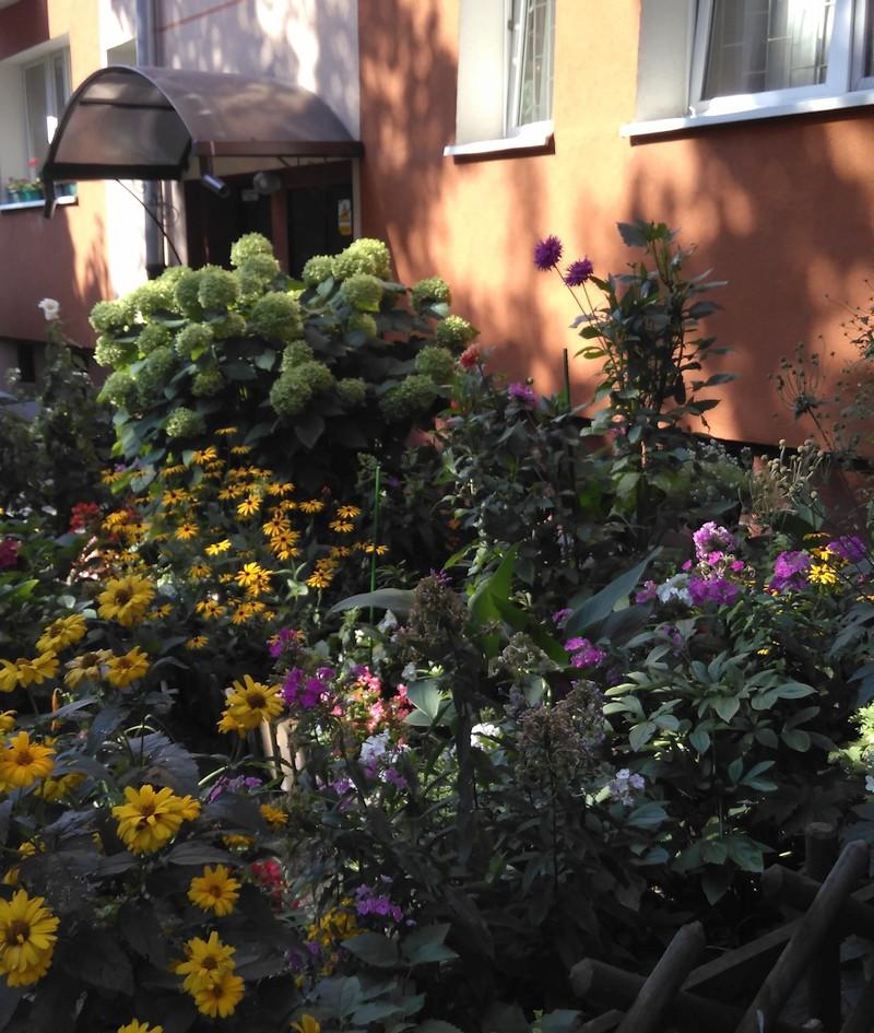 I miejsce - ogródek