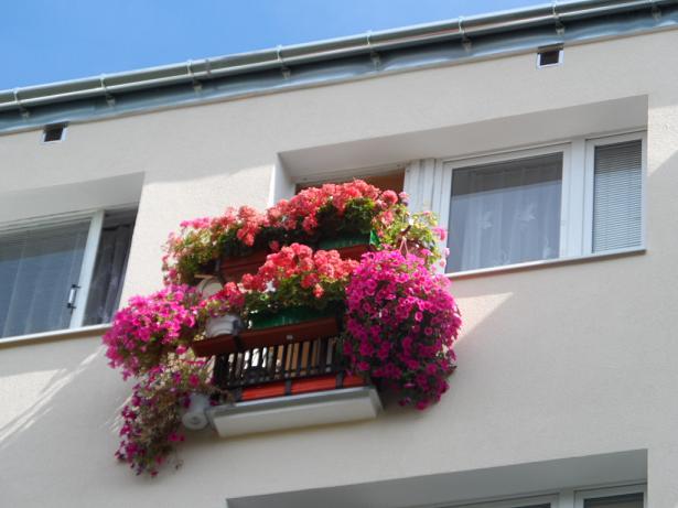 I m balkon