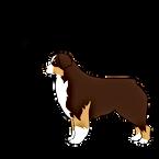 Logo_Elevage-de-la-Tour-Brune_PNG.png