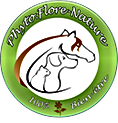 phyto-flore-nature-logo.jpg.png