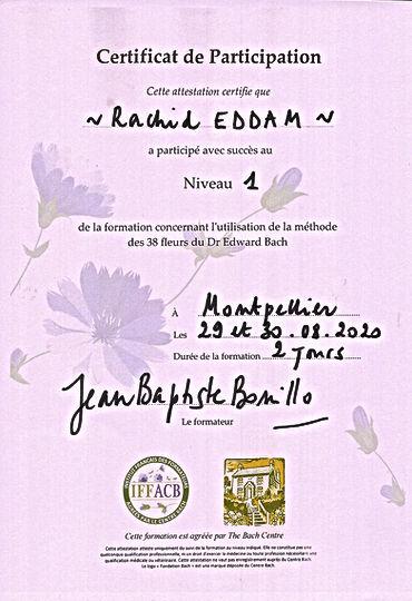 FleursDeBachNiveau1.jpg