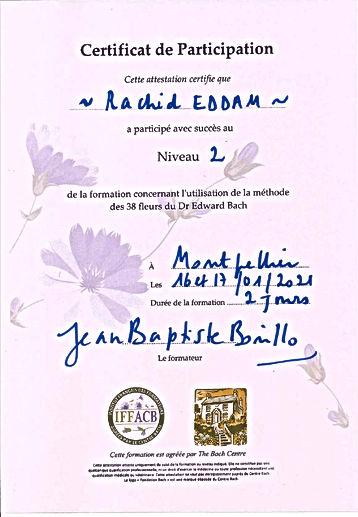 FleursDeBachNiveau27.jpg