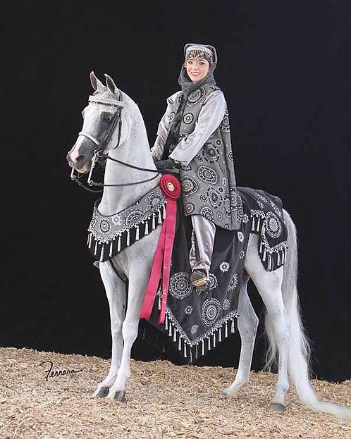 Black/Silver Custom Costume